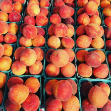 durham-produce-peaches-220x220.jpg